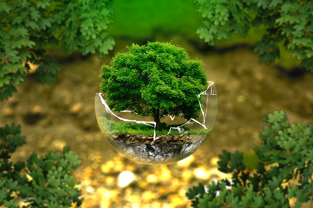 environmental-protection2
