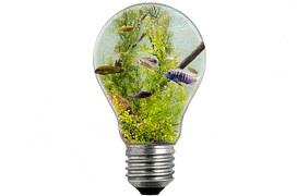 ideia bulb